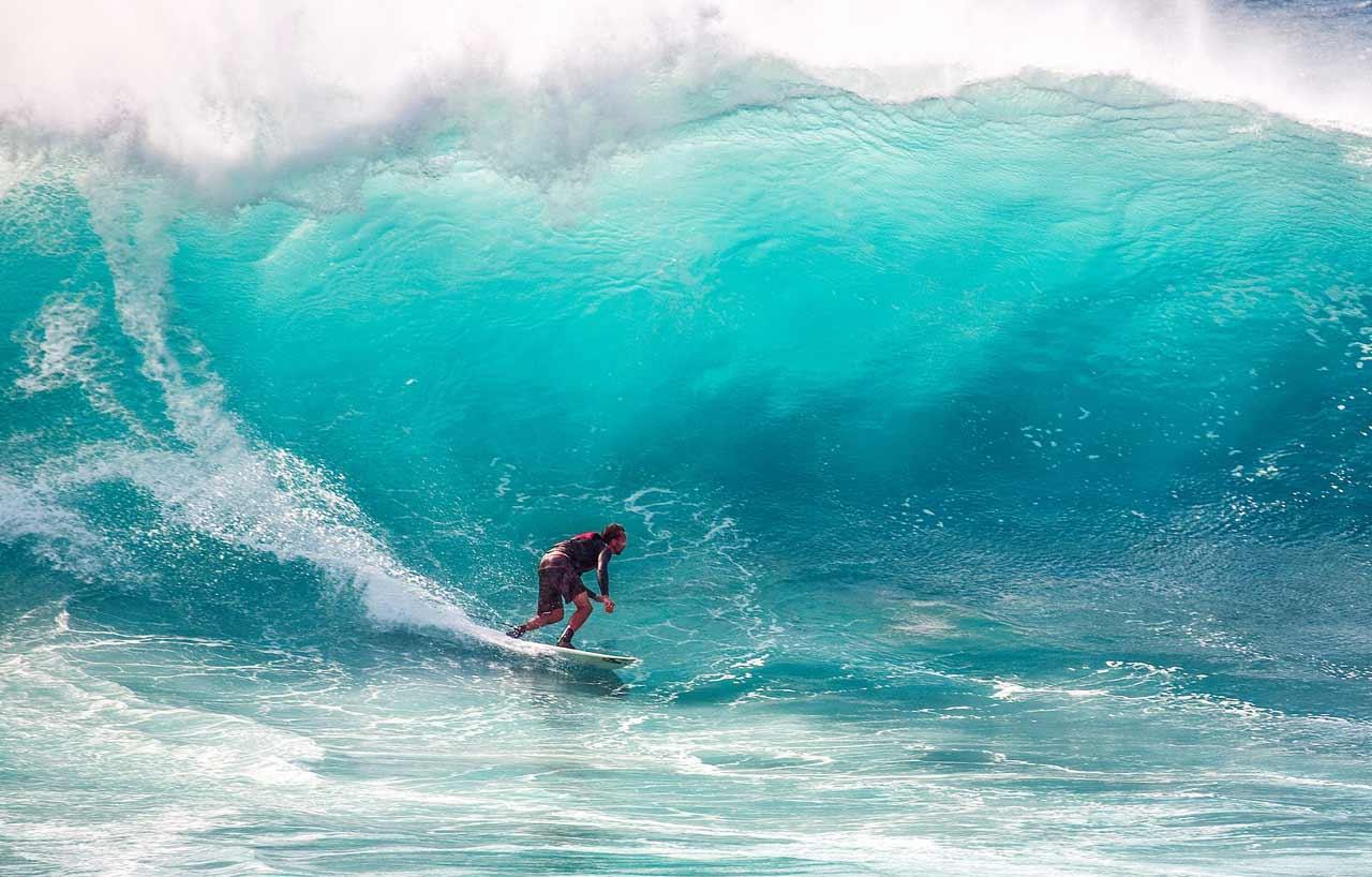 Ocean Recovery Vest